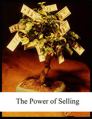 Download The Power of Selling by Kimberly Richmond