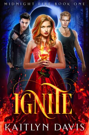 Ignite (Midnight Fire Series, Book 1) by Kaitlyn Davis