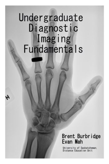 Undergraduate Diagnostic Imaging Fundamentals
