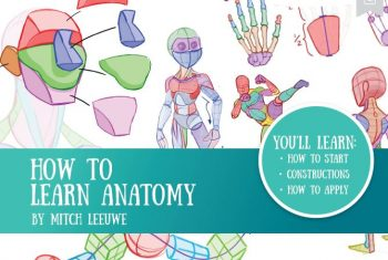 How to Learn Anatomy by Mitch Leeuwe pdf