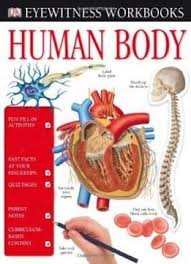 Human Body (DK Eyewitness Books) by Richard Walker PDF