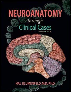 Neuroanatomy through Clinical Cases 2nd Edition pdf