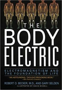 The Body Electric Electromagnetism And The Foundation Of Life pdf