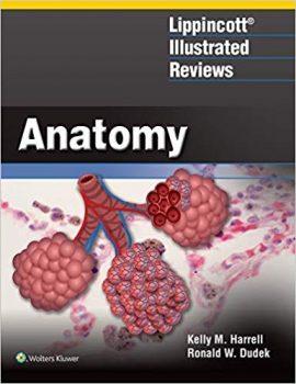 Lippincott Illustrated Reviews Anatomy PDF