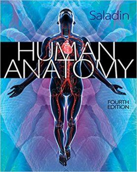 Human Anatomy by Kenneth Saladin PDF