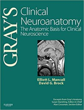 Clinical Neuroanatomy The Anatomic Basis for Clinical Neuroscience PDF
